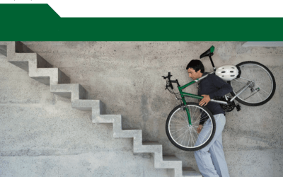 OECD: Mind the gap